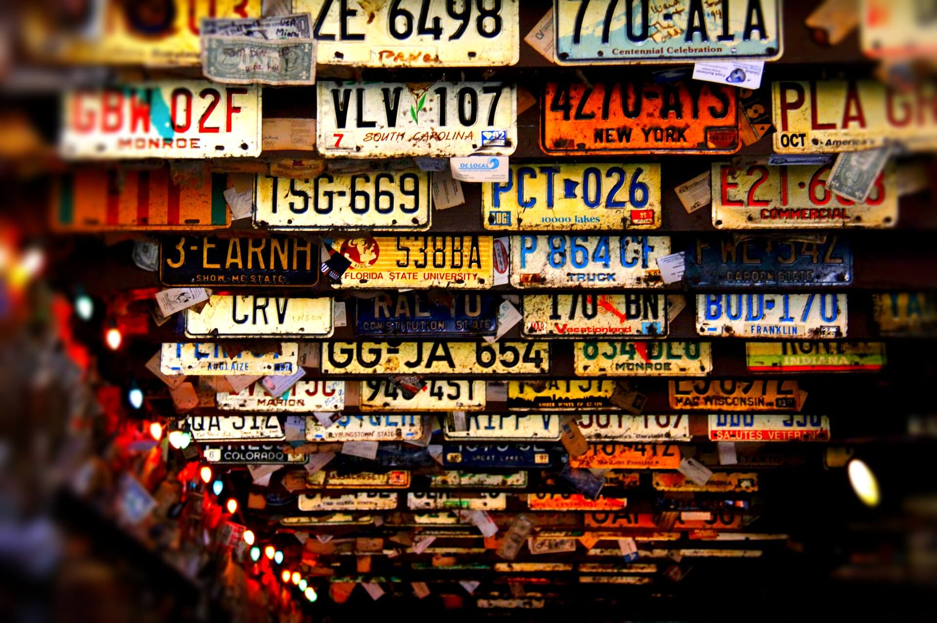 license plate options