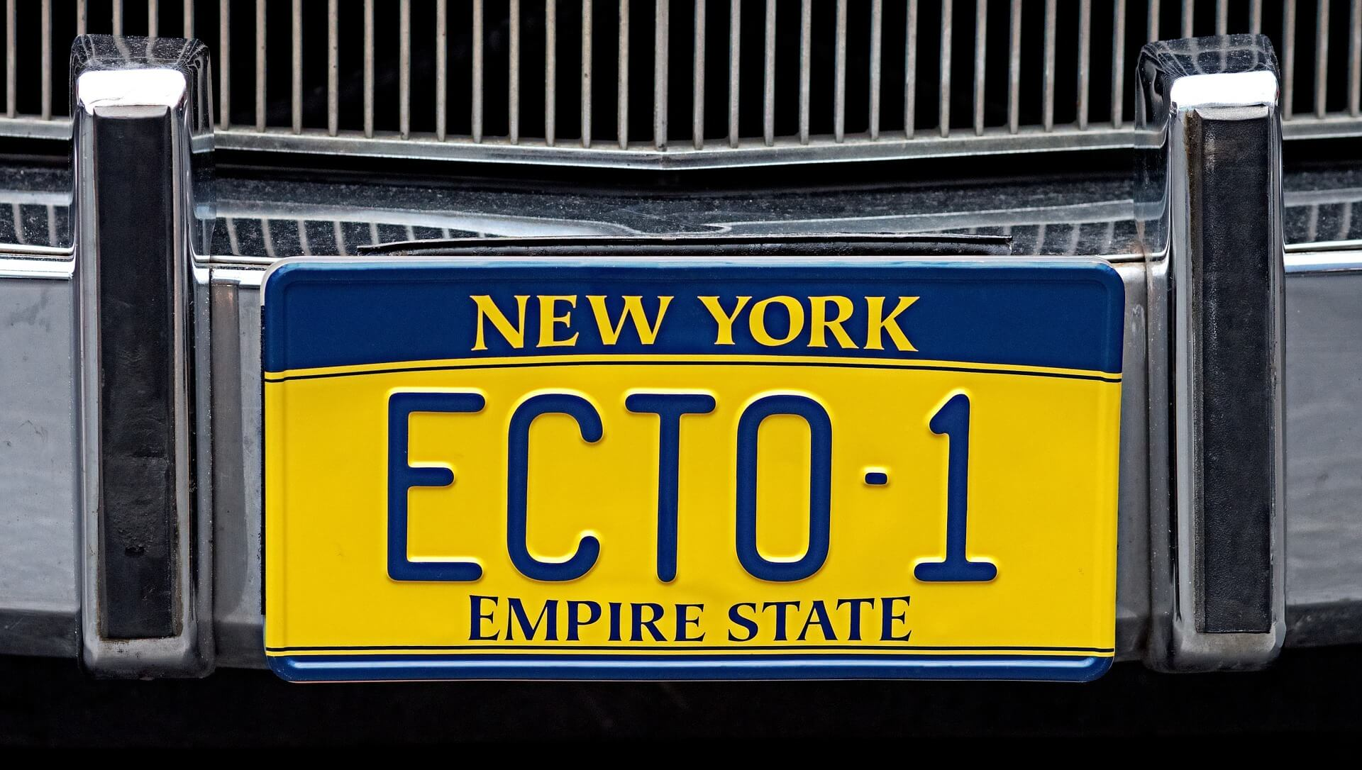 states license plate options