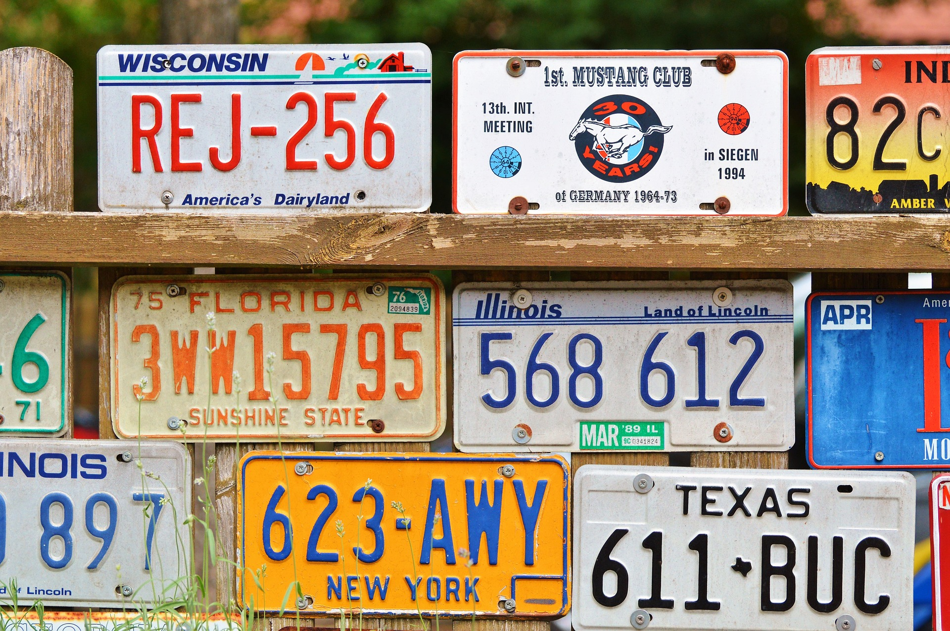 License Plate Laws in the US