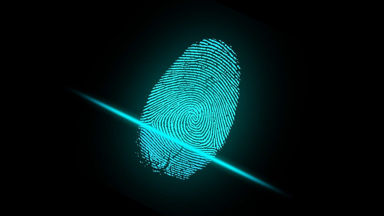 What Does a Fingerprint Background Report Show?